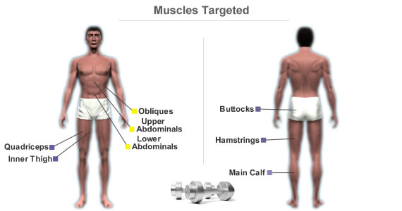 Muscles Targeted By Workout Routine For The Lower Body