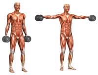 Workout-Routine.com | Your Guide to Workout Routines